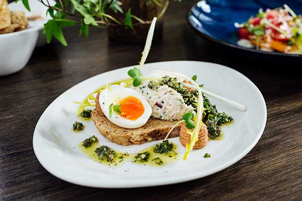 elephant600 1 - Simon Hulstone's The Elephant is popping up on John Lewis's rooftop
